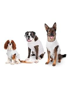Tutina Body Post Operatoria per Cani cm 26 x 32
